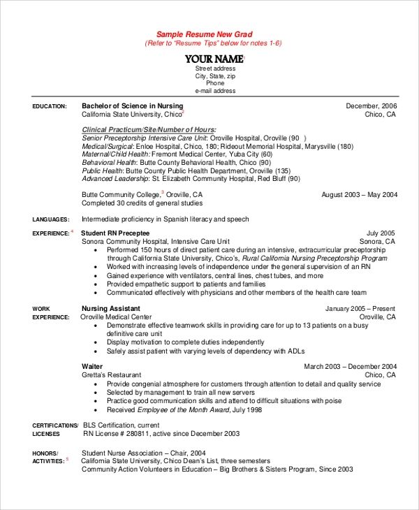 sample resume with education details
