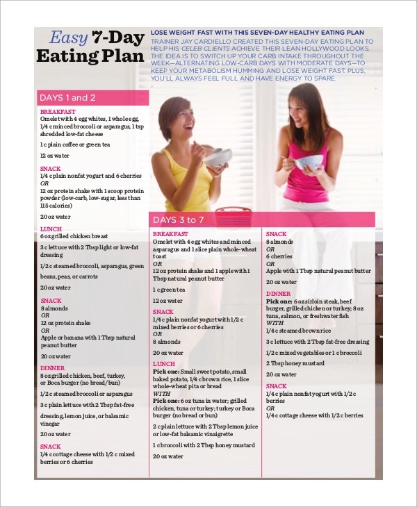 Sample Healthy Meal Plan - 8+ Examples in PDF - healthy meal plan