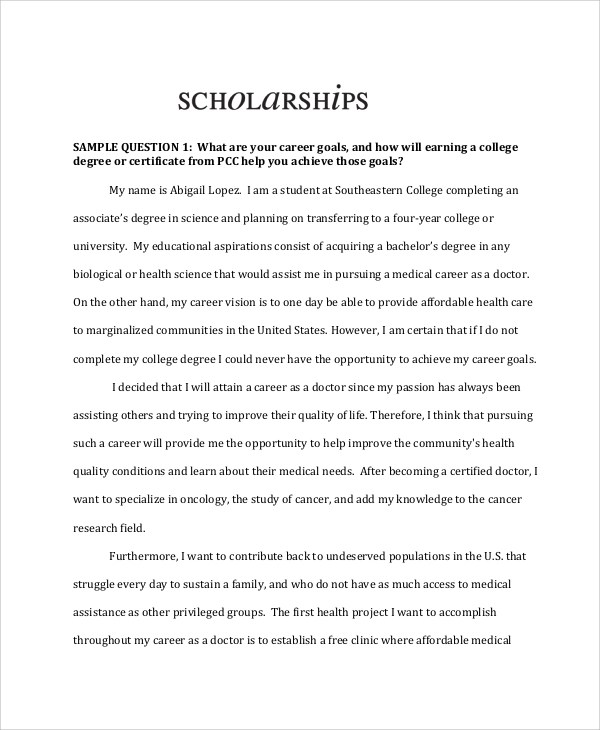 example of scholarship essays an essay on pollution in hindi