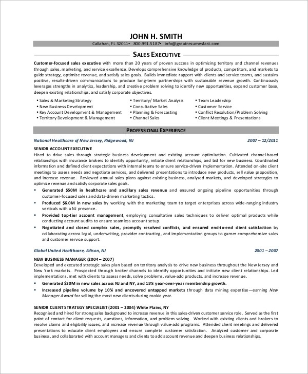 Sample Executive Resume - 8+ Examples in Word, PDF - sales executive resume