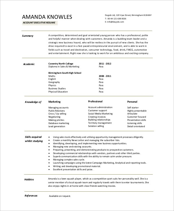 8+ Sample Executive Resumes Sample Templates