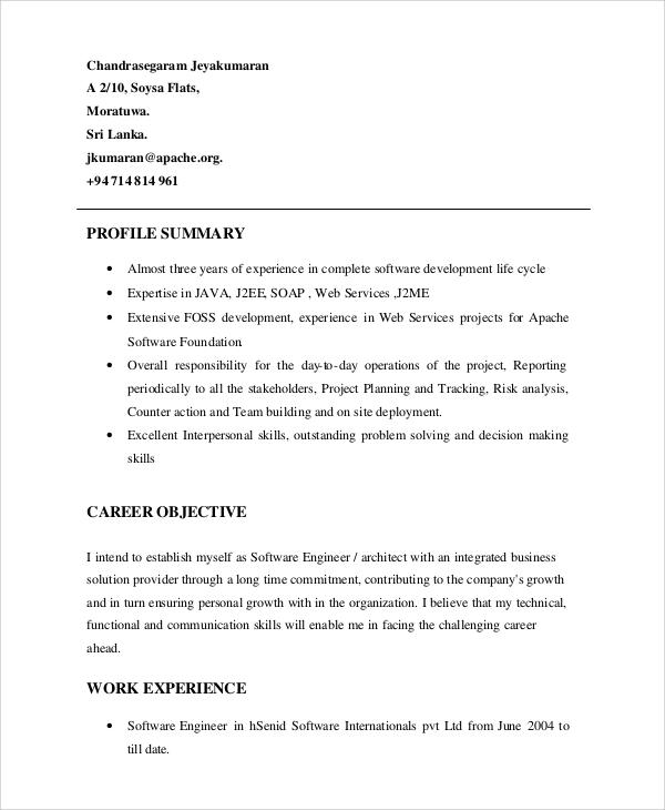cv resume profile summary example