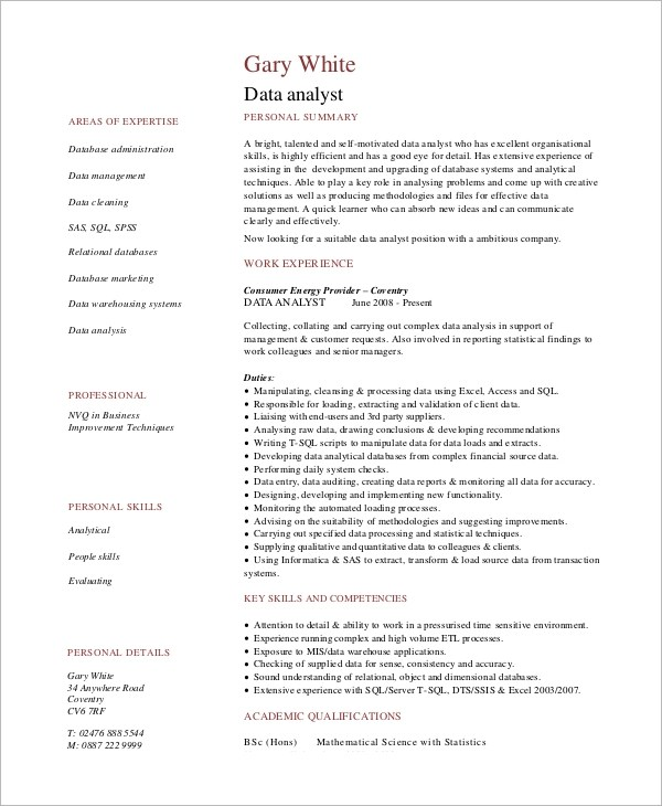 Sample Data Analyst Resume - 6+ Examples in Word, PDF