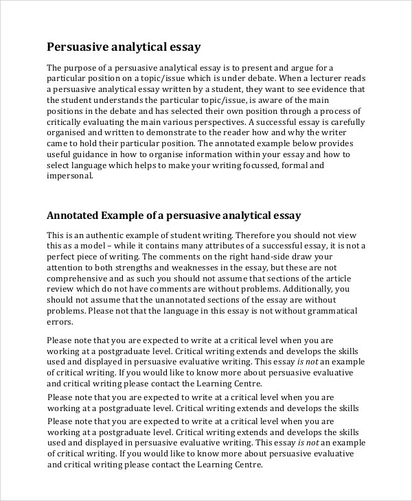critical writing examples essay