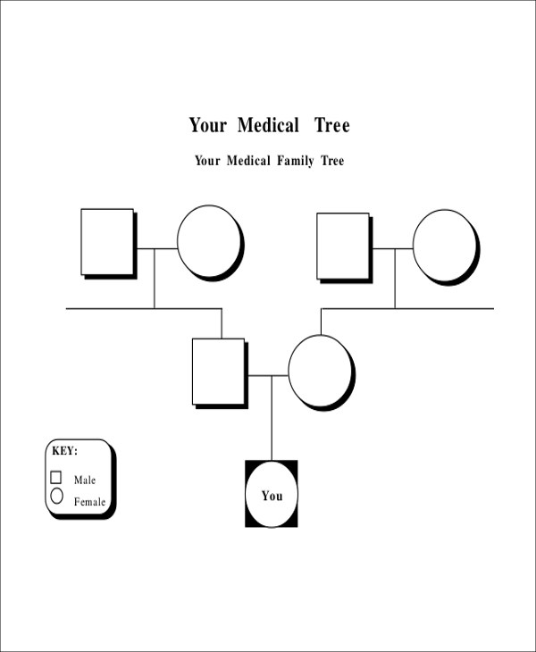 8+ Blank Family Tree Samples Sample Templates - family tree example