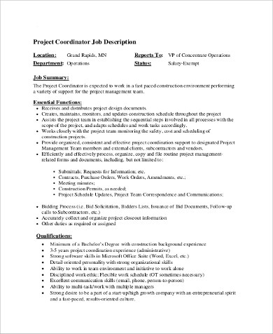 printable experience and executive project manager resume for job