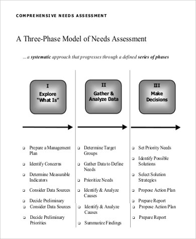 Needs Assessment Example - 9+ Samples in PDF - needs assessment templates