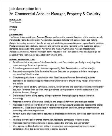 Commercial Manager Job Description Sample - 9+ Examples in Word, PDF - account management job description