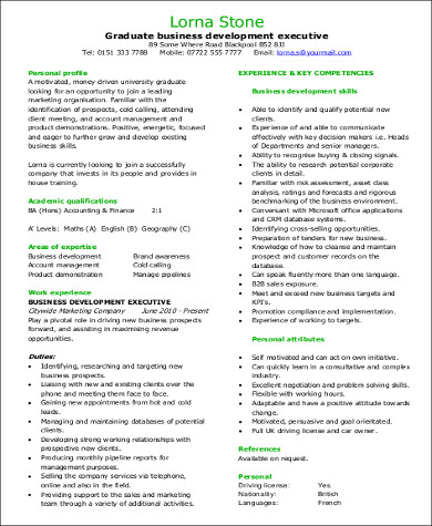 8+ Sample Business Development Executive Resumes Sample Templates