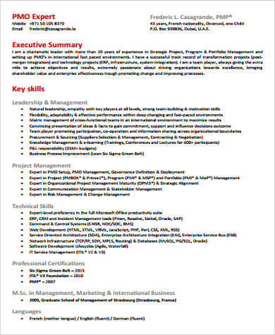 Sample Executive Director Resume - 7+ Examples in PDF - pmo director resume