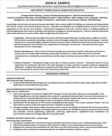 executive marketing director resume - Militarybralicious - director of marketing resume