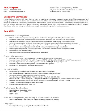 8+ Sample Executive Summary Resumes Sample Templates - resume executive summary