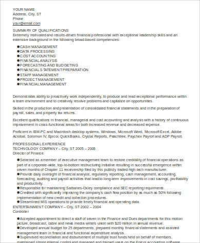 Executive Summary Resume Example - executive summary in resume