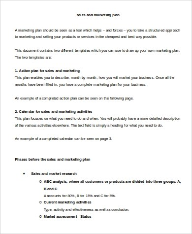 Sample Marketing Action Plan   7+ Examples In PDF, Word   Sample Sales  Action