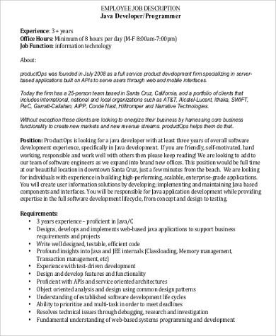 Computer Programmer Job Description Sample - 11+ Examples in Word, PDF - system programmer job description