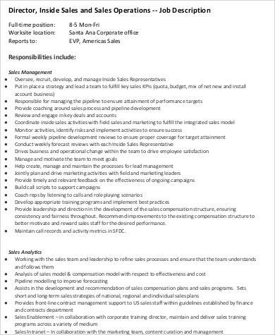 Sales Director Job Description  Resume Template Sample