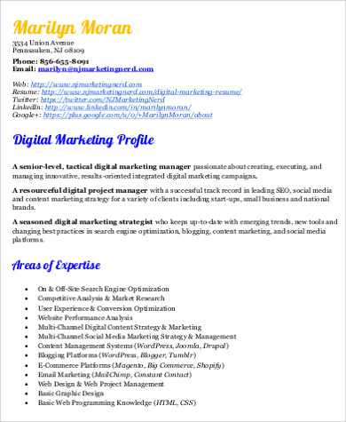 8+ Sample Digital Marketing Resumes Sample Templates