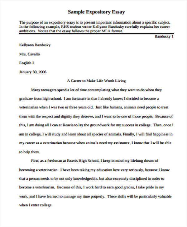 Example Of Expository Essay Pdf Mistyhamel