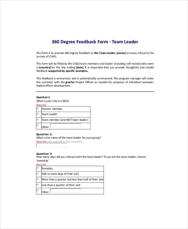 Sample 360-Degree Feedback Form - 7+ Examples in Word, PDF