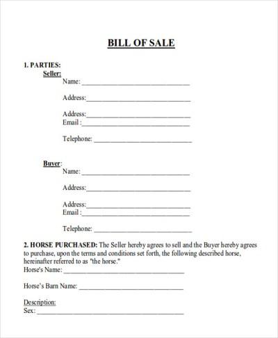 8+ Horse Bill of Sales | Sample Templates