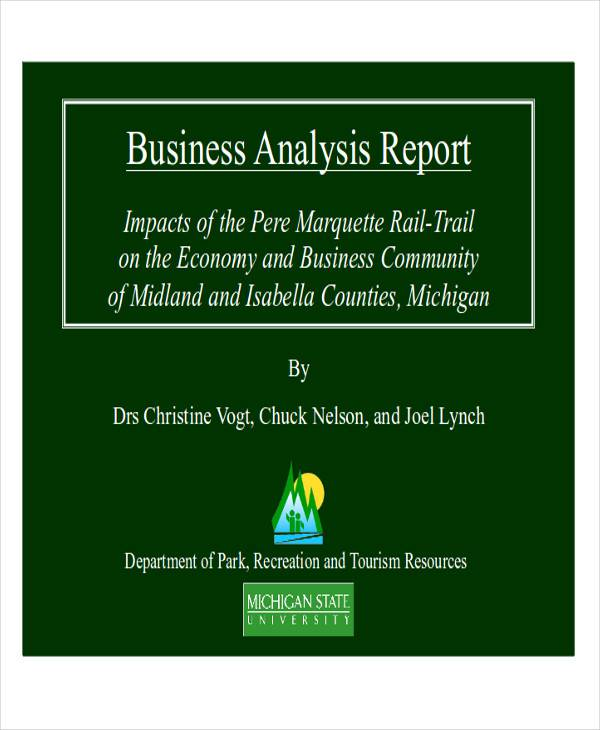 Sample Business Analysis Report - 8+ Examples in PDF, word - analysis report format