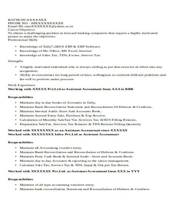 resume format doc accountant