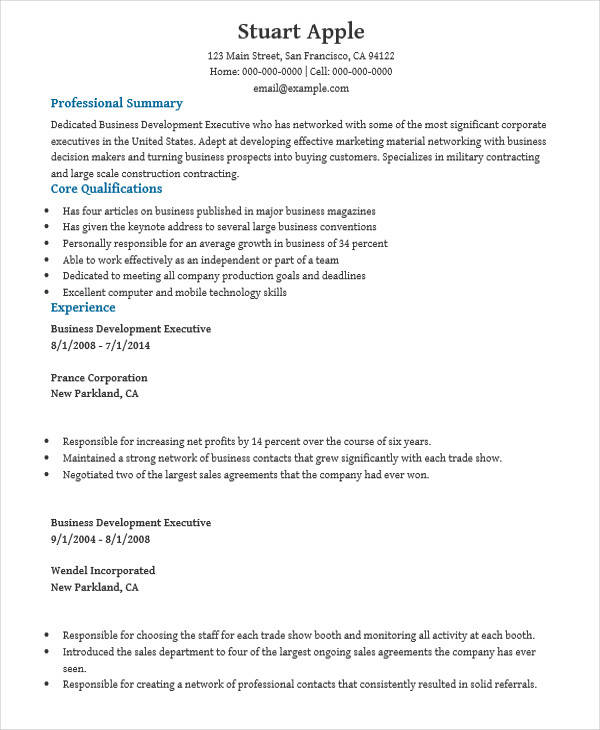 28+ Executive Resumes in Word Sample Templates - business development executive resume