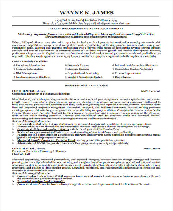 28+ Executive Resumes in Word Sample Templates - finance executive resume