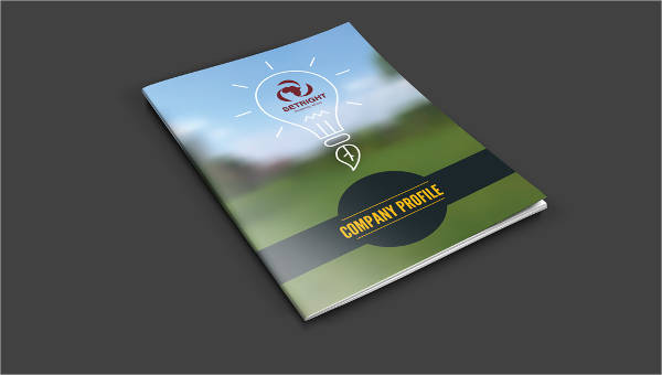 25+ Company Profile Samples - PDF