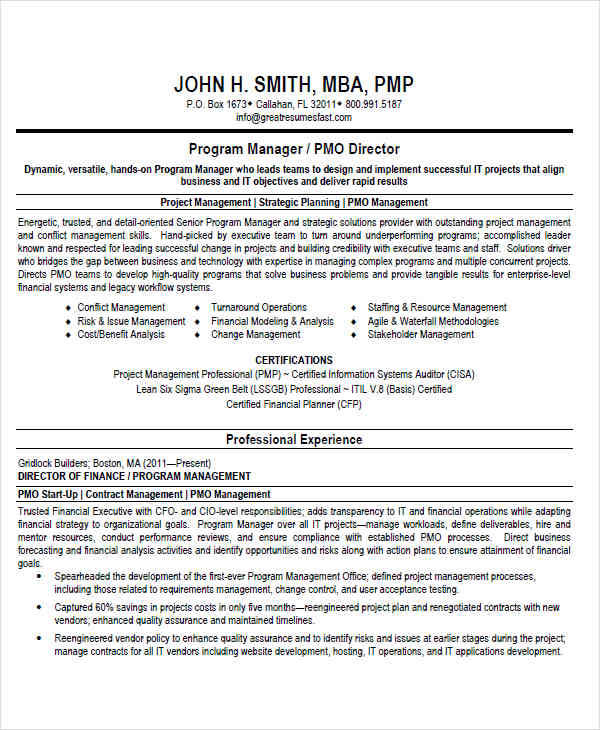 44+ Manager Resume Example - pmo director resume