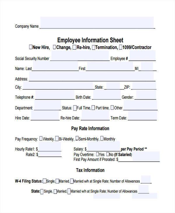 Information Sheet Sample kicksneakers