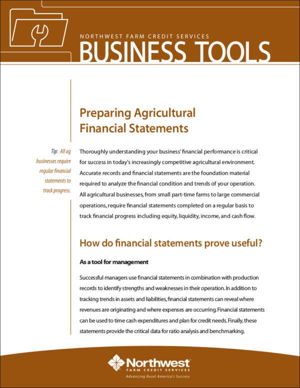 Essential Financial Statements Business - Design Templates