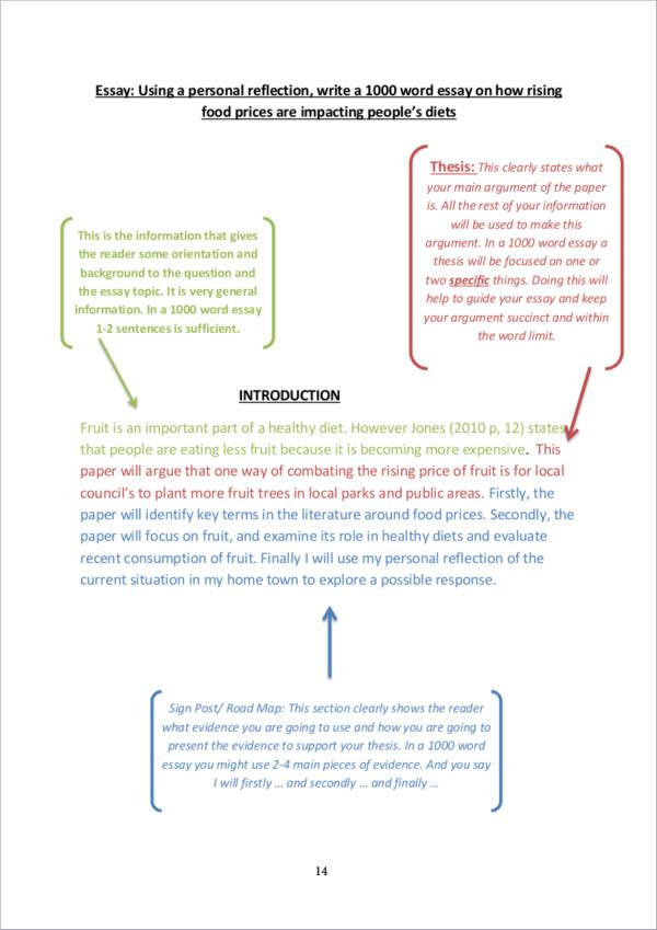 11+ Essay Writing Samples  Templates - PDF