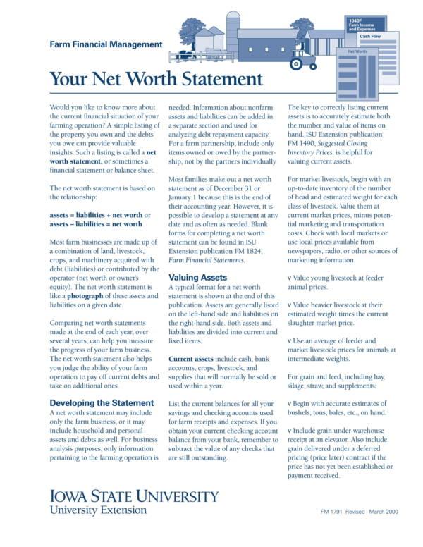 9+ Net Worth Statement Samples \u2013 PDF, Excel Sample Templates - assets liabilities net worth