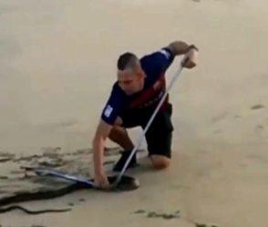 Video: દરિયાકિનારે ન્હાતા'તા, અચાનક આવ્યો દુનિયાનો સૌથી ઝેરીલો સાપ, જાણો પછી શું થયું