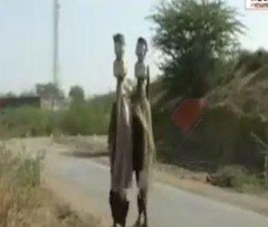 જુનાગઢના ઘેડ પથંકના લોકો પીવાના પાણીમાટે મારે છે વલખા, જુઓ વીડિયો