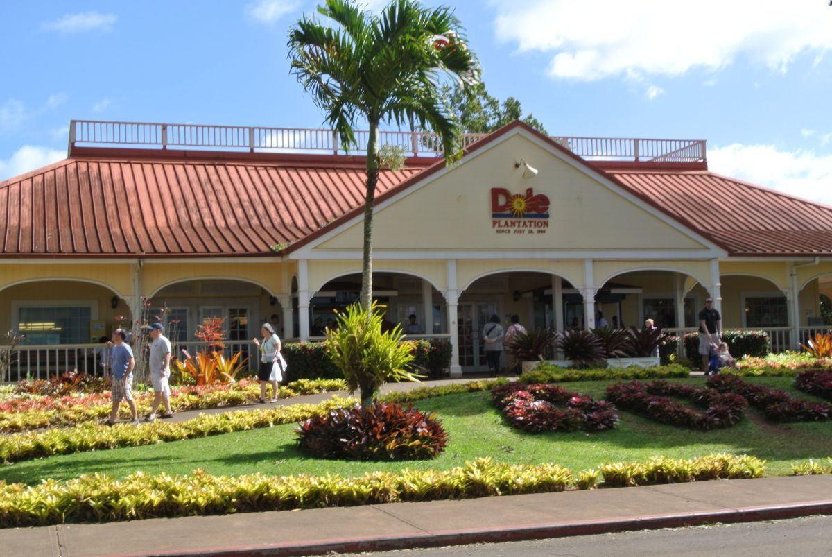Dole Pineapple Plantation Things To Do On Oahu Hawaii Wanderwisdom
