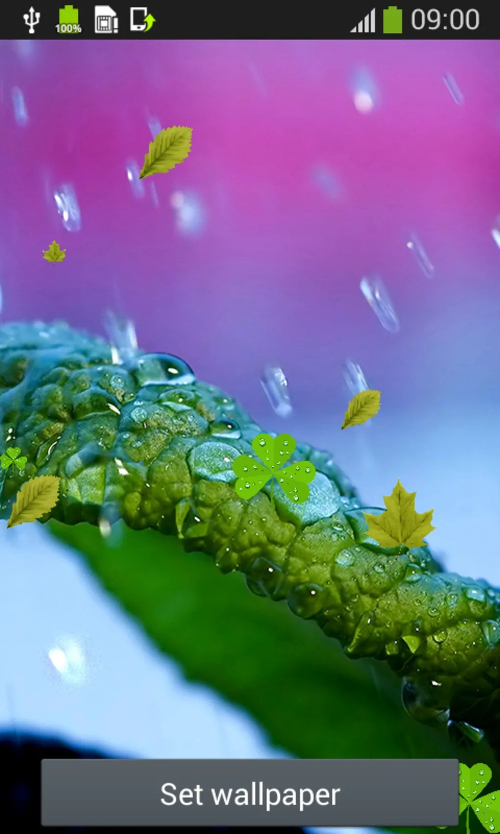 3d Rose Wallpaper Apps Rain Drops Live Wallpapers For Android Download