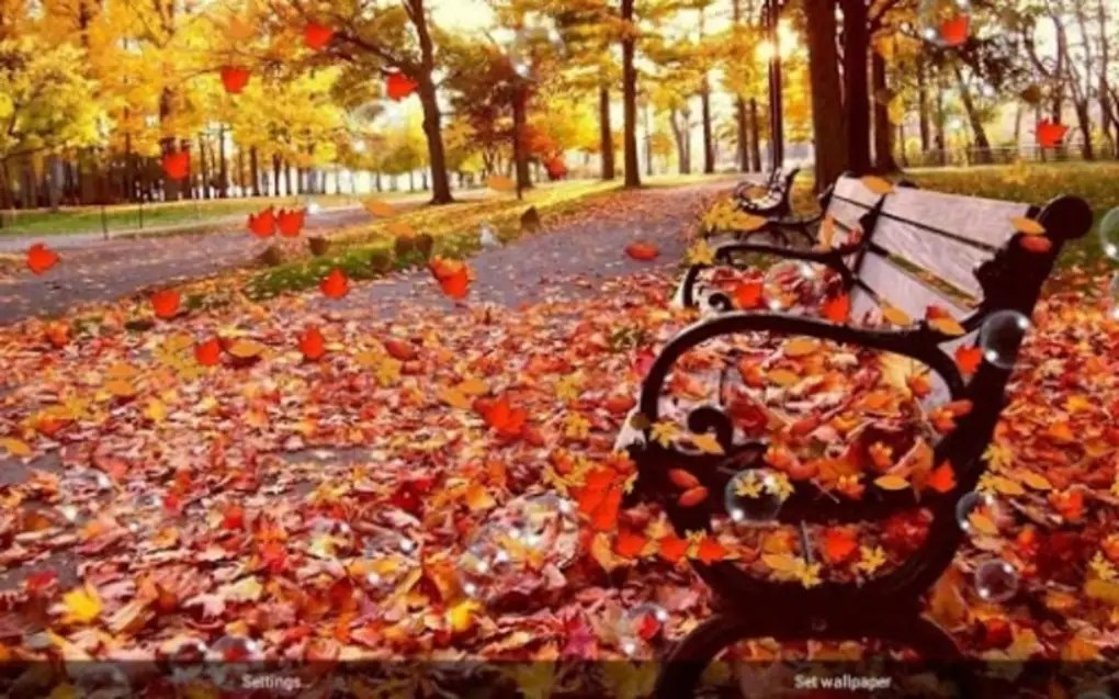 Leaf Wallpaper Quote Mac Autumn Live Wallpaper Free For Android Download