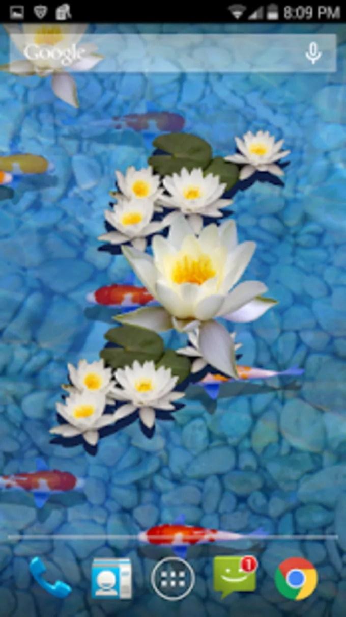 Koi Pond 3d Live Wallpaper Pro Apk 3d Fish Pond Live Wallpaper For Android Download