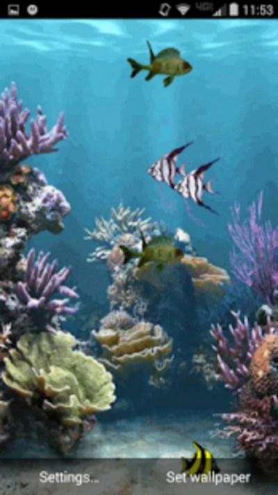 Aquarium Live Wallpaper for Android - Download