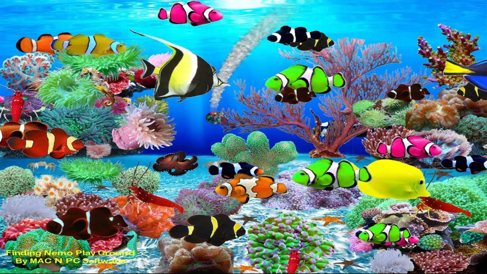 Iphone 5 Clown Fish Wallpaper Finding Nemo Aquarium Download