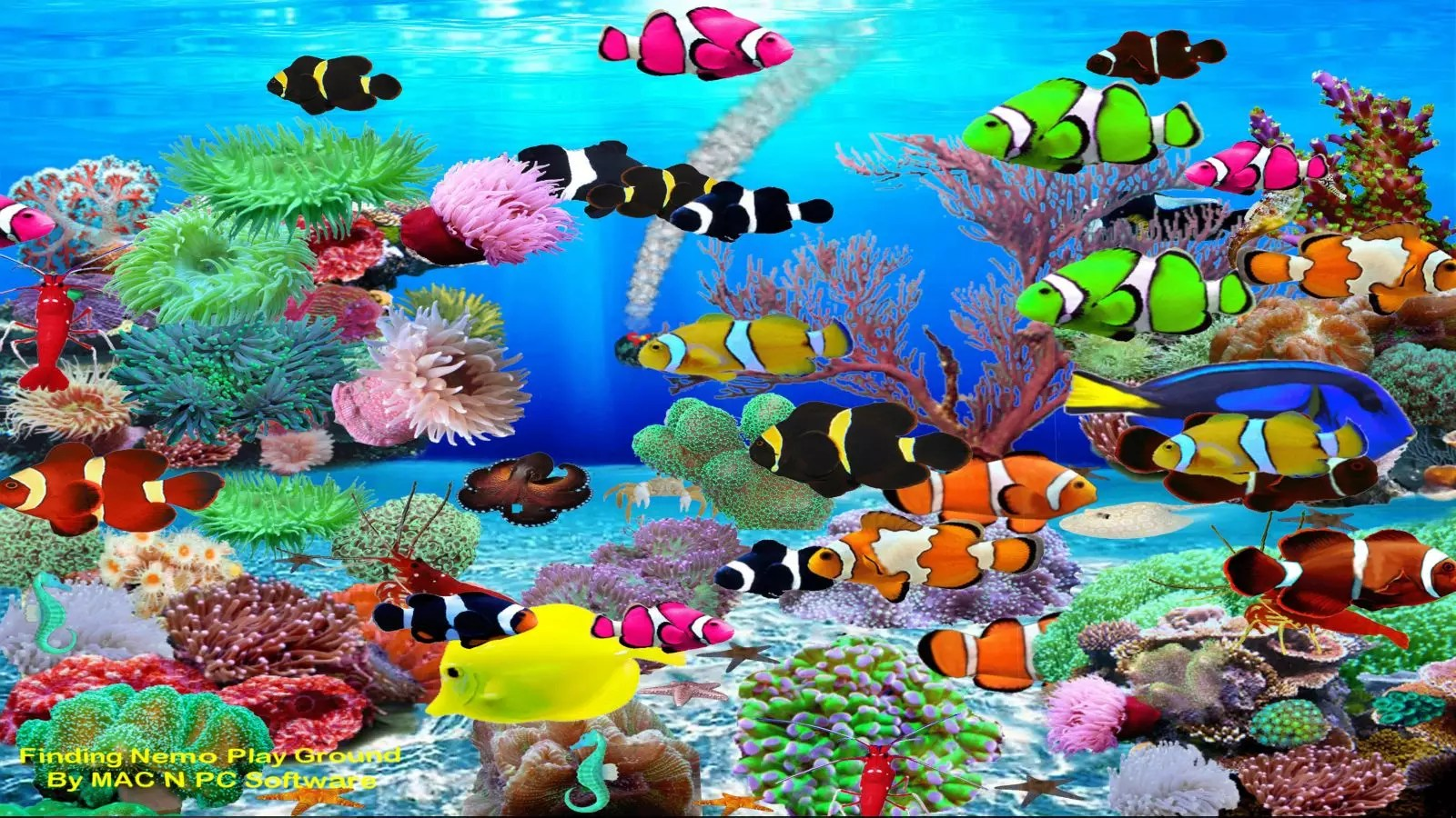 Snow Wallpaper Iphone 5 Finding Nemo Aquarium Download