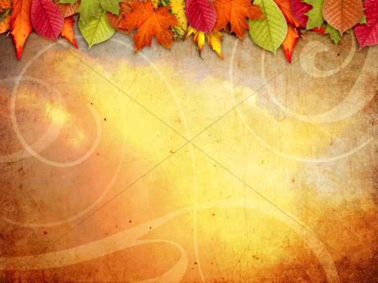 Fall Harvest Wallpaper Backgrounds Fall Worship Backgrounds Fall Backgrounds