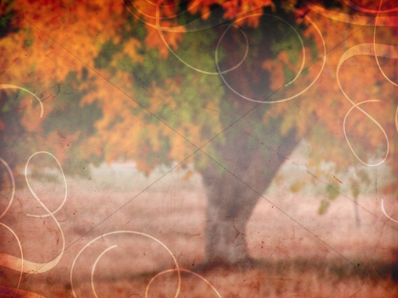 Hd Wallpaper Fall Leaf Change Fall Worship Backgrounds Fall Backgrounds Good Friday
