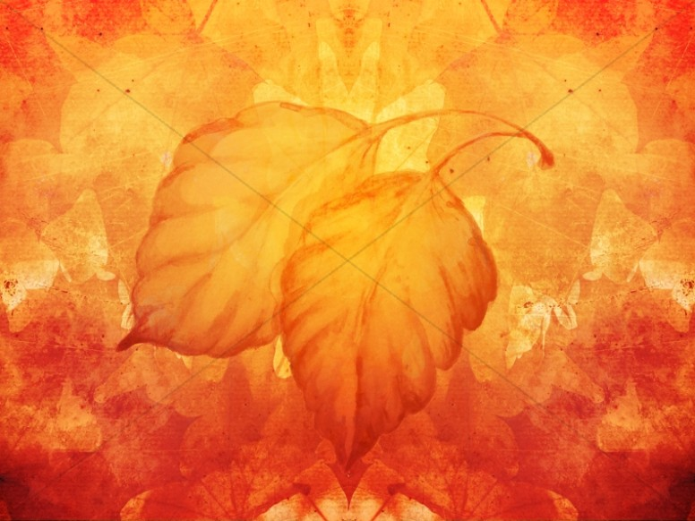Fall Harvest Wallpaper Images Worship Backgrounds For Church By Sharefaith Page 12