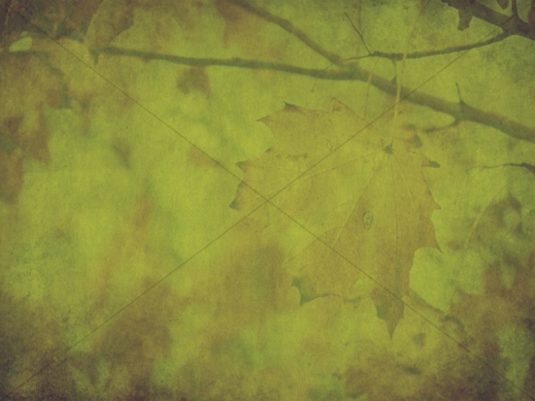 Falling Leaves Wallpaper Free Download Green Thanksgiving Fall Worship Background Worship