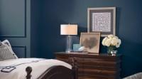 Sherwin Williams Blue Bedroom Ideas | Psoriasisguru.com