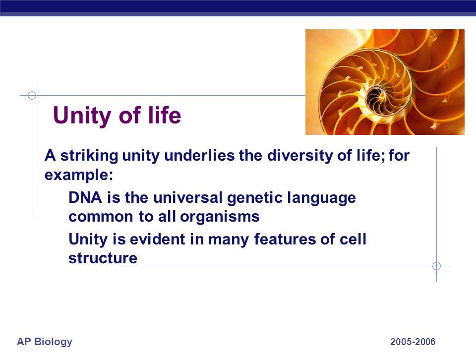unity and diversity essay admission essay editing service scandia