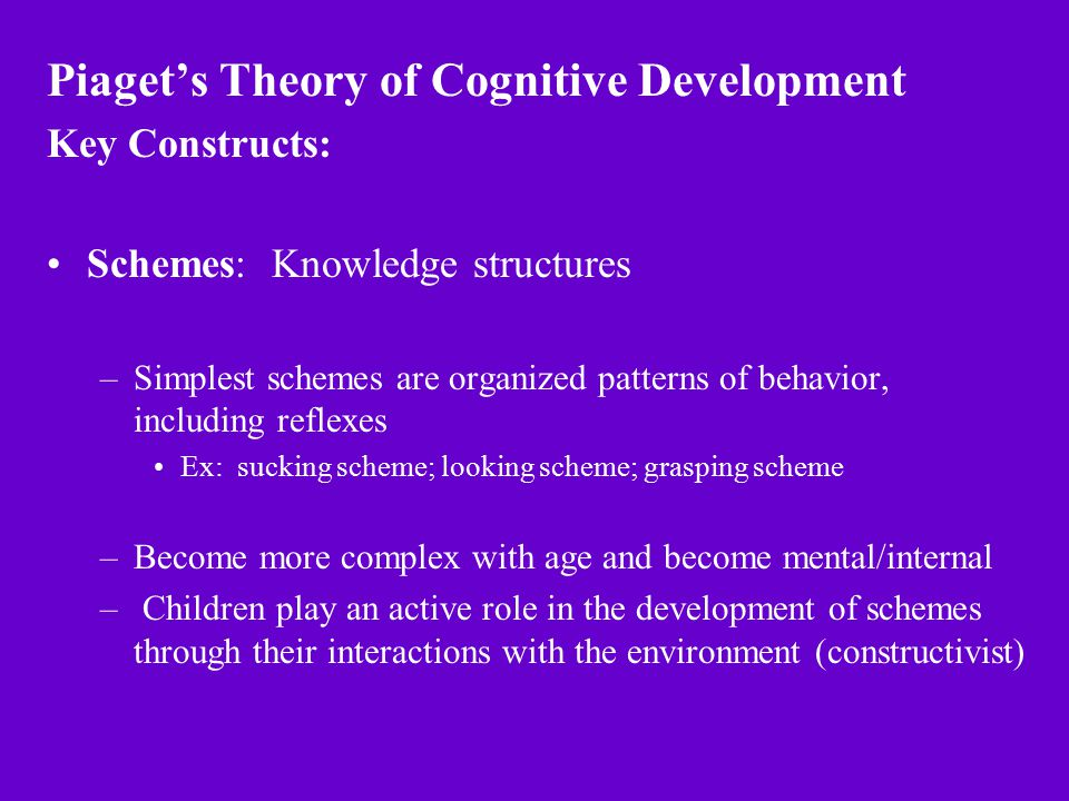 Piaget\u0027s Theory of Cognitive Development Key Constructs Schemes